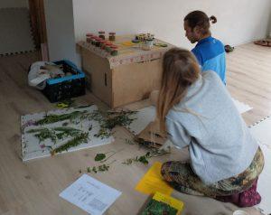 warsztaty zielarskie Zakopane